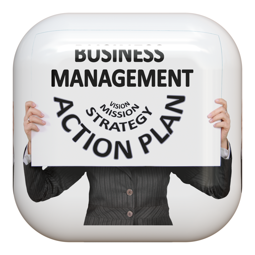 Business management: mission, strategy, action, plan