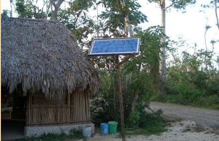 Photovoltaikanlage im Busch